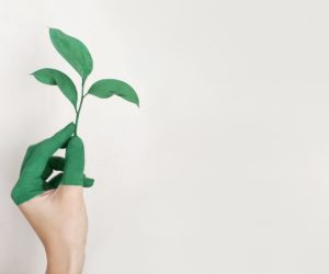 How To Become A Sustainable Business Using Telephony